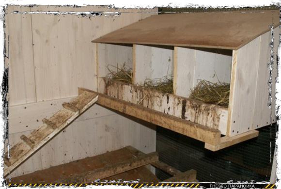 Гнезда для индюшек своими руками фото