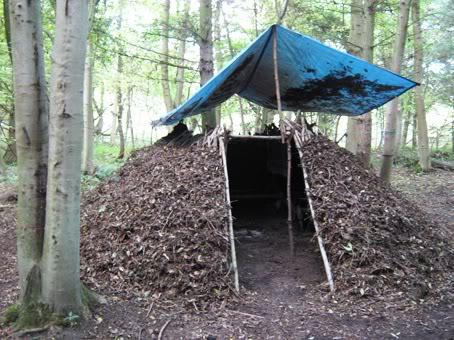 Постройка временного укрытия в лесу