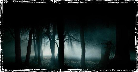 человек в темноте скачать торрент - фото 8