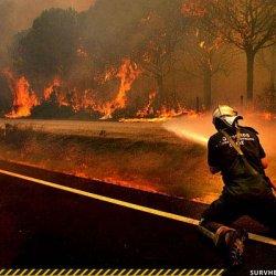 Лесные пожары в окрестных городах