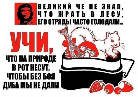 Советы партизанам - плакаты