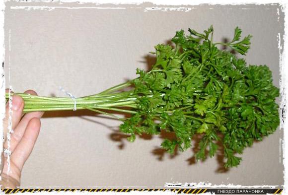 Сушка зелени и трав