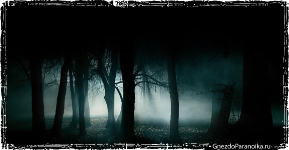 Психология поведения в темноте