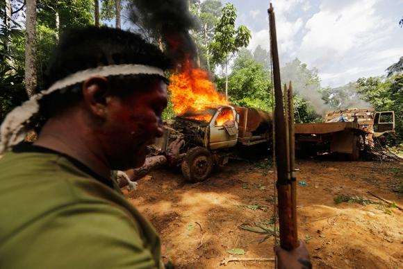 Война за лес