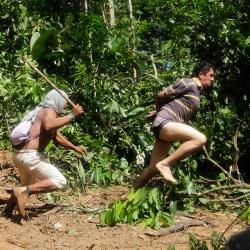 Война за лес в лесах амазонки