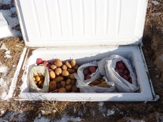 Мини погреб на дачном участке